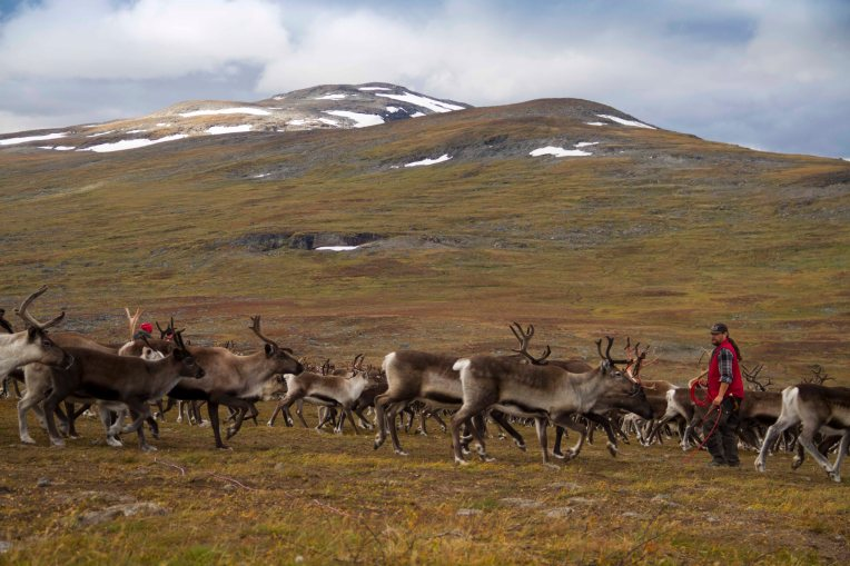 Lappland Sami PeopleTina Rentzsch02small