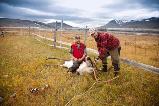 Lappland Sami PeopleTina Rentzsch14small